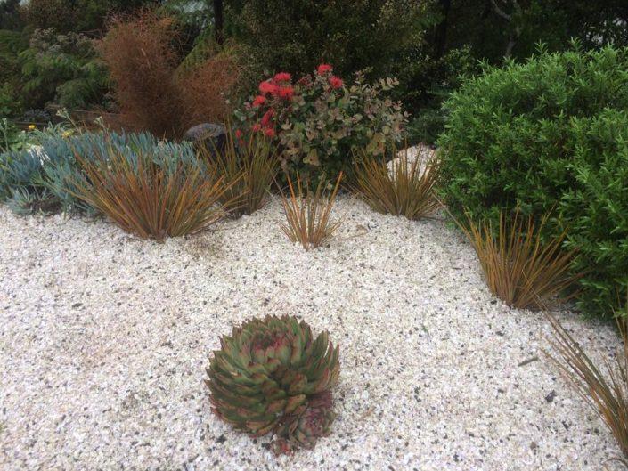 West Harbour garden