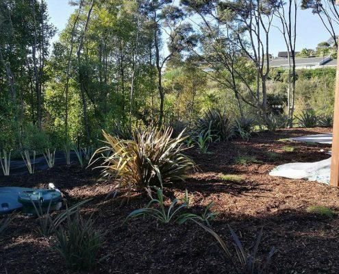 gardening greenhithe