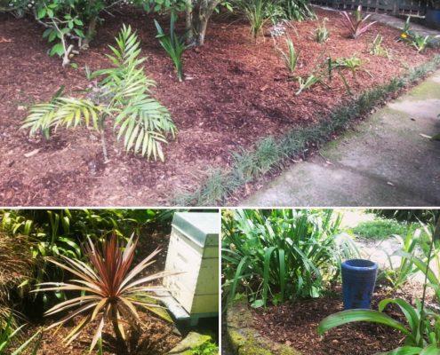 garden maintenance mulching
