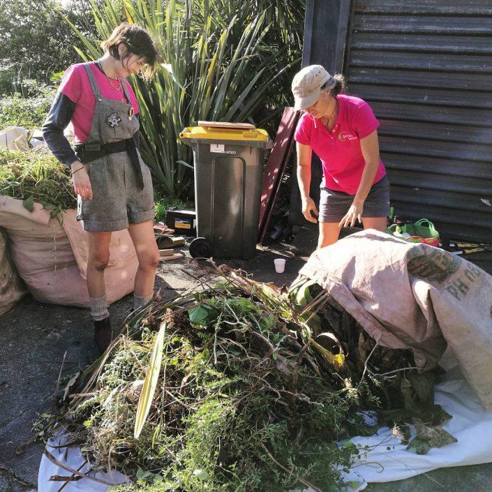 auckland gardeners